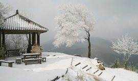 【周末】冬季徒步莫干山,走蒋公道,看大竹海(1天)