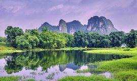 广州从化影古线赏万亩梅花,摘沙糖桔一日游