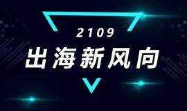2019 出海新风向