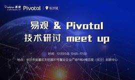 易观&Pivotal  技术研讨meetup