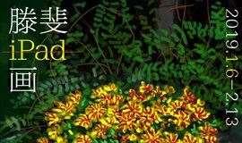 华侨城最活跃的艺术家滕斐iPad画工作坊