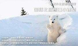 把小北极熊带回家|国际北极熊日小课堂