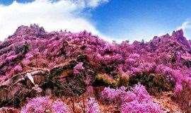 【大珠山年卡】赏花、爬山、饮泉水,听波涛观奇石、石门寺祈福,全年通用
