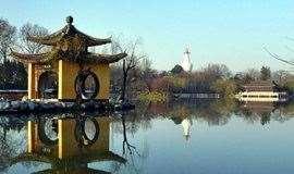 [友行友派|3.23-3.24]赏水上油菜花田,逛三月扬州古城