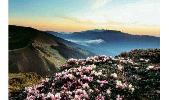 【站在草原望广东】广东醉美的草原—云端上的牛塘山