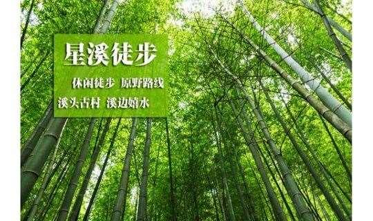 广州从化最美乡村星溪线徒步、穿越十里野竹林、逛溪头村古巷、品尝特制竹筒饭、小吃、山水豆腐花、全程10公里