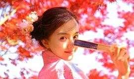 春日祭浪漫之旅,无锡太湖花火大会