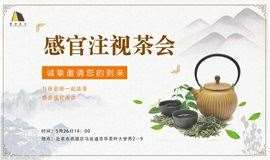 感官注视茶会——与徐老师一起品茶、感受感官阅读