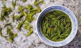 茶艺沙龙,识茶,品茶,聊茶