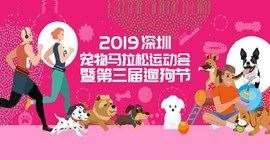 活动报名 || 2019深圳宠物马拉松运动会 | 暨第三届深圳遛狗节