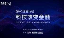2020《财经》年会BVC高峰夜话