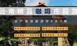"""""""中国咖啡之都""""之旅,探索咖啡经营的玄机!——咖啡庄园4日游"""