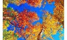 『户外』10.20周日 | 去喇叭沟门 · 赴一场秋天的约会