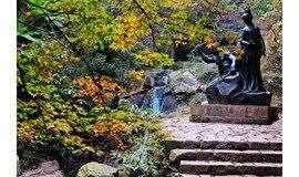 「山中秋色」11.16 走进莫干山,树树皆秋色,山山唯落晖;有一种逃离叫躲进莫干山的秋色里~