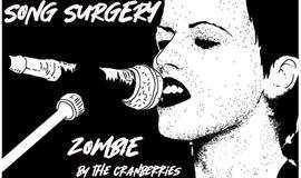 Song Surgery: 来自小红莓的音乐疗法