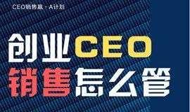 创业CEO,销售怎么管?-第6期「案例精讲,新年奉献」