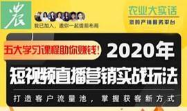 2020年短视频直播营销实战玩法课