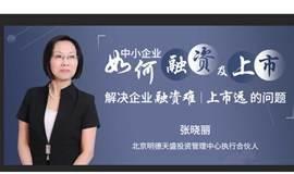 张晓丽:中小大发牛牛怎么玩企业 如何融及上市