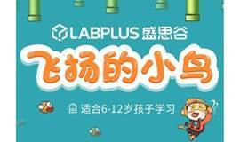 少儿编程开发游戏【飞扬的小鸟】,线上直播项目课,自己创造的游戏更有成就感!