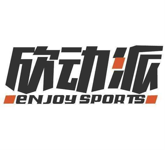 欣动派体育文化