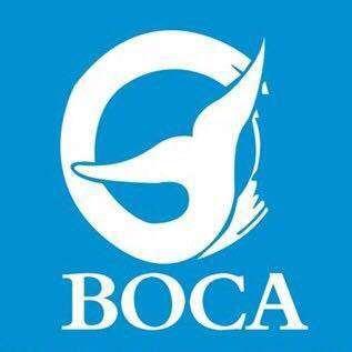 深圳市蓝色海洋环境保护协会