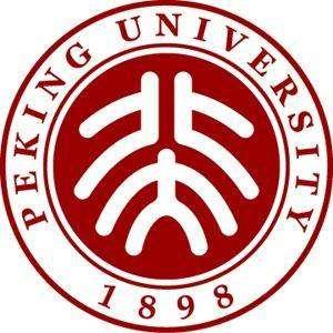 北京大学市场研究中心