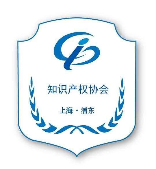 上海市浦东新区知识产权协会
