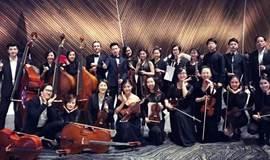 单向演出|维也纳古典乐的交响 海顿莫扎特的全新演绎