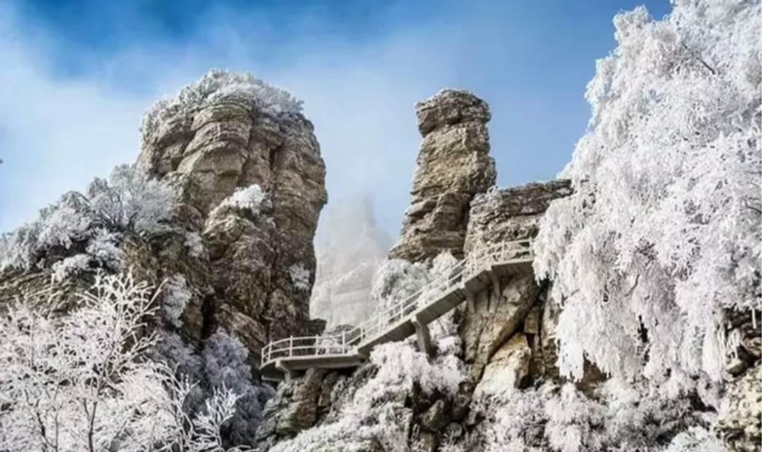 12.9周六/12.10周日,登白石山置身纯白的童话世界看满山银花、观云海