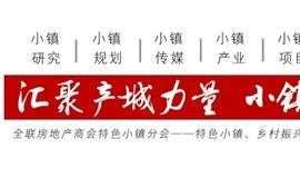 小镇吹响集结号,2019小镇中国大会4月举办