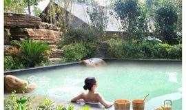 周六:北宋温泉,穿着宋式浴袍,采用深地下温泉水。杨柳青年画。一日休闲活动