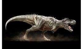 【亲子-科普】小小地质家---时空穿梭(下)—恐龙霸主的灭绝,哺乳动物的兴起