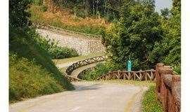 """3月23日徒步""""九转十八弯""""银湖山绿道"""