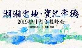2019柳叶湖创投峰会