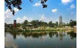 """4月20日徒步""""百年老园""""北宁公园,走九曲桥观致远塔"""