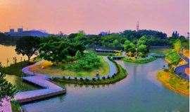 4月20日徒步植物园,观赏岩石园、名树名花园、樱花苑