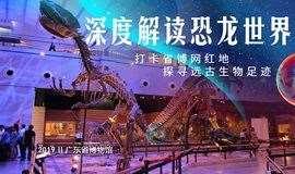 打卡网红地:走进省博,考古寻源,深度解读恐龙世界
