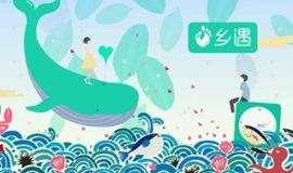深圳同城广东、湖南、广西、湖北、川渝老乡周末徒步交友聚会,深圳湾公园美丽乡遇