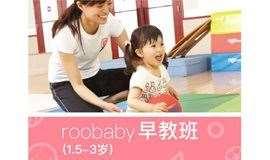 路奇斯运动学院roobaby半日运动早教班