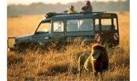 【免费】多彩轻探险 X WeWork 神奇动物游猎——坦桑尼亚Safari旅行分享,打卡网红办公区!