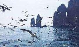 五一4天|长岛|养马岛-深度游长岛-文成城堡休闲四日游