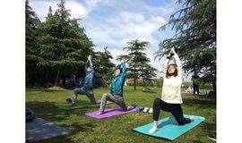 体验活动来袭 | 5月26日世纪公园—户外瑜伽用身体感受自然