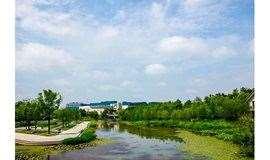 要交友来徒步,5月26日徒步上海闵行体育公园