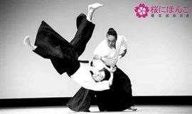 日本武道文化之合气道