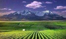 招募||宁夏贺兰山东麓酒庄游学X腾格里沙漠五湖穿越