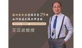 【原价198元,现价9.9元试听】清华王汉武教授《品牌管理》29讲,如何快速引爆品牌营销!