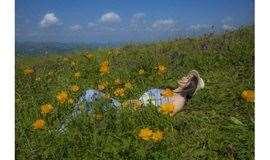 周六:玉石梁-喜鹊梁花海徒步穿越10公里,媲美【武功山】的徒步圣地-高山草甸-