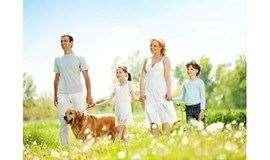 幸福父母 |『P.E.T.父母效能训练』精品工作坊(9月平日班)