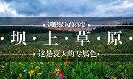 北京户外活动——每周五出发坝上草原|骑上骏马,追寻自由的脚步!