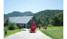 1日|海坨山谷|瑞士小镇-童话世界-网红圣地-处处都是极致体验